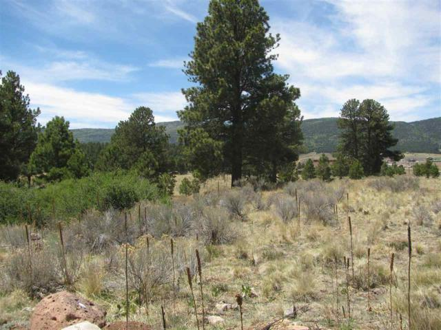TBD Horseshoe Bend, Angel Fire, NM 87710 (MLS #101626) :: Page Sullivan Group | Coldwell Banker Mountain Properties