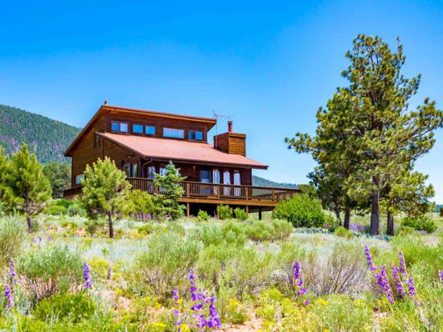 109 Squash Blossom, Angel Fire, NM 87710 (MLS #101639) :: The Chisum Realty Group