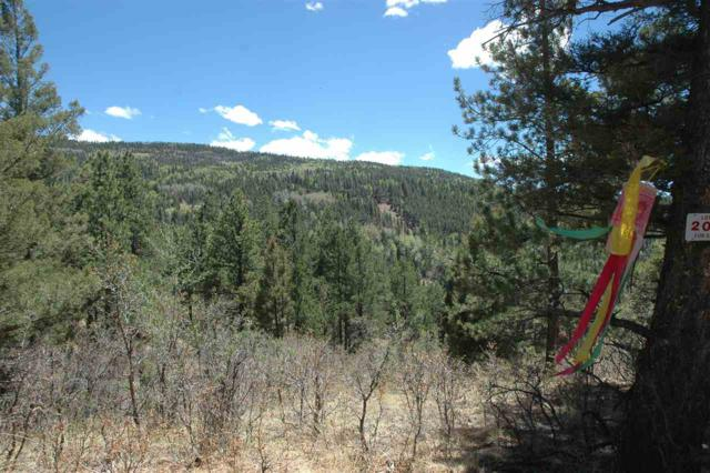 Lot 208 E Summit Place, Angel Fire, NM 87710 (MLS #101643) :: Angel Fire Real Estate & Land Co.