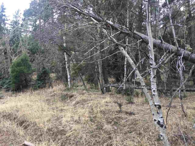 Lot 1 Blue Lake Terrace, Angel Fire, NM 87710 (MLS #101652) :: Angel Fire Real Estate & Land Co.