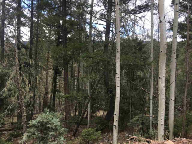 Lot 2 Blue Lake Terrace, Angel Fire, NM 87710 (MLS #101653) :: Angel Fire Real Estate & Land Co.