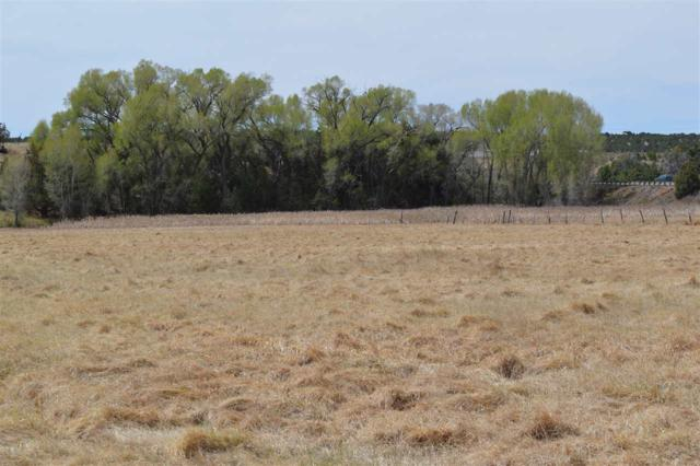 6A Hondo Seco Rd, Arroyo Hondo, NM 87513 (MLS #101657) :: Page Sullivan Group | Coldwell Banker Lota Realty