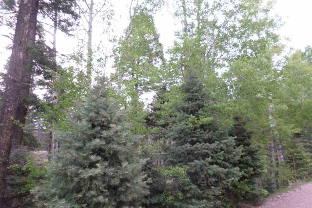 1572 Luna Drive, Angel Fire, NM 87710 (MLS #101667) :: Page Sullivan Group | Coldwell Banker Mountain Properties