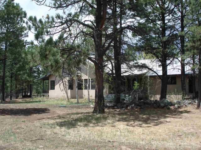 Lot 8 Susan Lane, Angel Fire, NM 87710 (MLS #101669) :: Angel Fire Real Estate & Land Co.