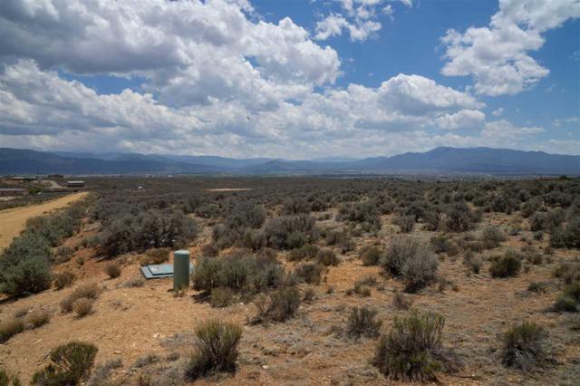 Camino Halcon, El Prado, NM 87529 (MLS #101673) :: The Chisum Realty Group