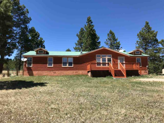 43 Norte Road, Angel Fire, NM 87710 (MLS #101683) :: Page Sullivan Group   Coldwell Banker Lota Realty