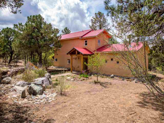 42 Turkey Springs Rd, Taos, NM 87580 (MLS #101685) :: Page Sullivan Group | Coldwell Banker Mountain Properties