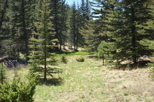 1 acre Blr, Black Lake, NM 87710 (MLS #101696) :: Page Sullivan Group | Coldwell Banker Mountain Properties