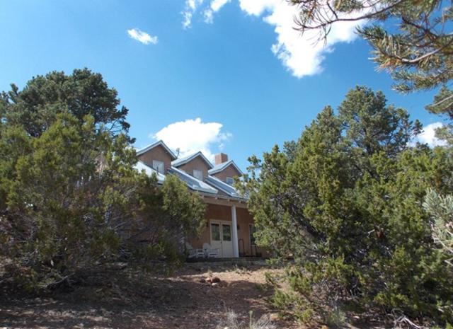 58 Deer Mesa Road, Valdez, NM 87580 (MLS #101709) :: Page Sullivan Group | Coldwell Banker Lota Realty