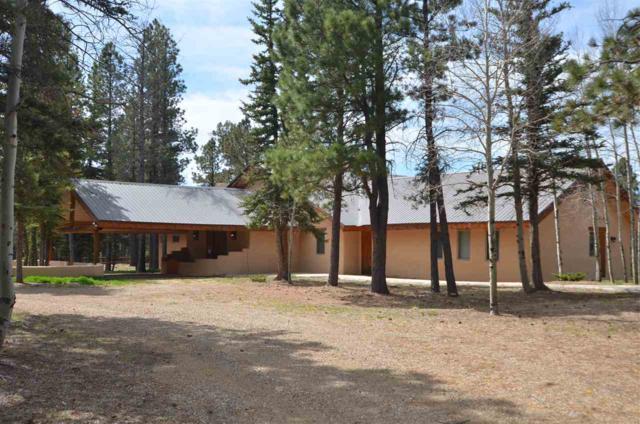 11 Jarosa Creek Rd., Black Lake, NM 87710 (MLS #101722) :: The Chisum Realty Group