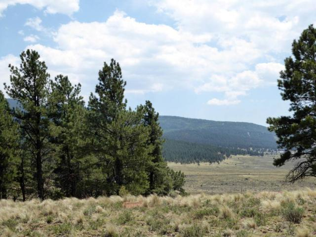 Lot 2 Valley Vista (Saddleback Trail), Angel Fire, NM 87710 (MLS #101728) :: Page Sullivan Group | Coldwell Banker Lota Realty