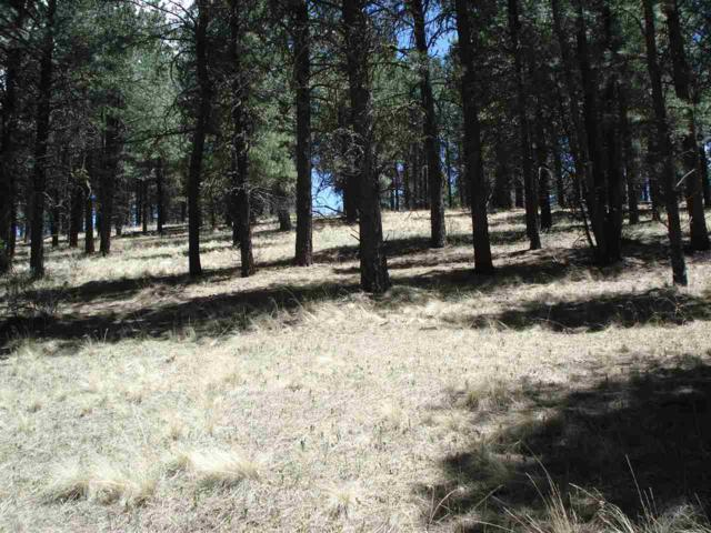 Lot 62 Valley Road, Angel Fire, NM 87710 (MLS #101737) :: Angel Fire Real Estate & Land Co.