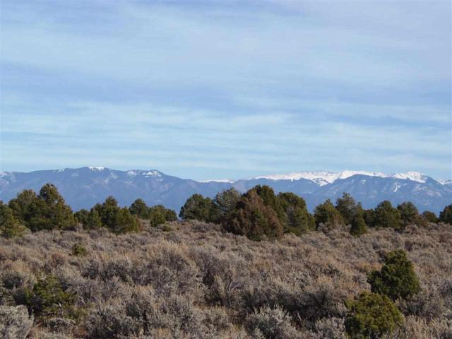 MM 0379 Hwy 285 S. Of Tp, Tres Piedras, NM 87577 (MLS #101752) :: The Chisum Realty Group