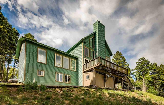 75 Vermejo Drive, Angel Fire, NM 87710 (MLS #101766) :: The Chisum Realty Group