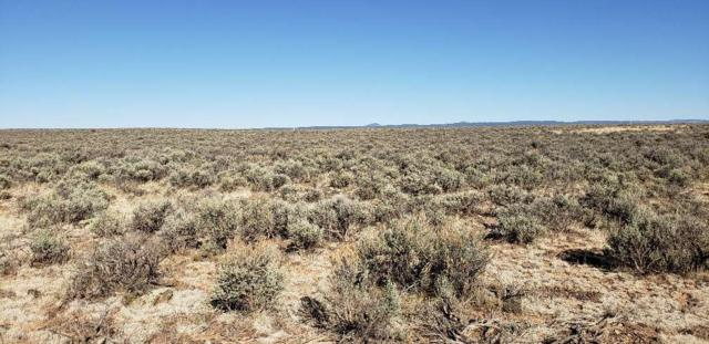 Two Hawks, El Prado, NM 87529 (MLS #101768) :: Page Sullivan Group