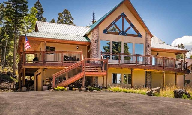 28 Cheerful Way, Angel Fire, NM 87710 (MLS #101772) :: The Chisum Realty Group