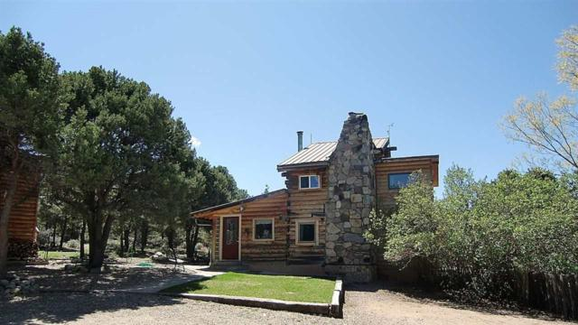 81 Quintana Road, Questa, NM 87556 (MLS #101787) :: The Chisum Realty Group