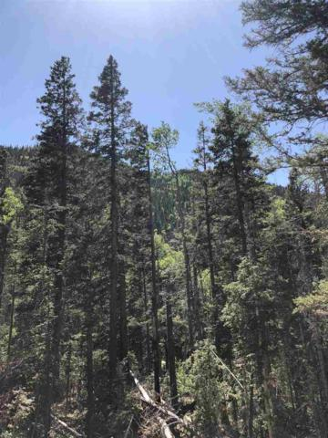 Block M Lot 10 Zap's Road, Taos Ski Valley, NM 87525 (MLS #101791) :: The Chisum Realty Group
