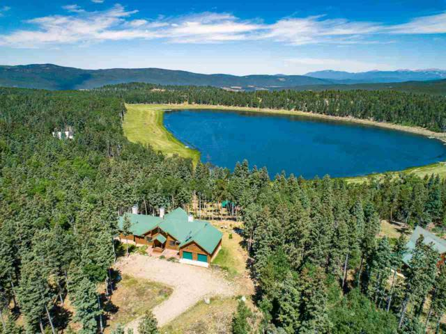 144 Hidden Lake Circle, Black Lake or Angel Fire, NM 87710 (MLS #101825) :: The Chisum Realty Group
