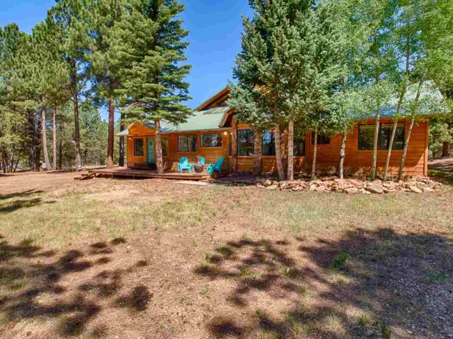 35 Alta Rd, Angel Fire, NM 87710 (MLS #101826) :: The Chisum Realty Group