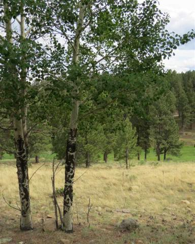 Lot 1212 Colonial Trail, Angel Fire, NM 87710 (MLS #101839) :: Angel Fire Real Estate & Land Co.