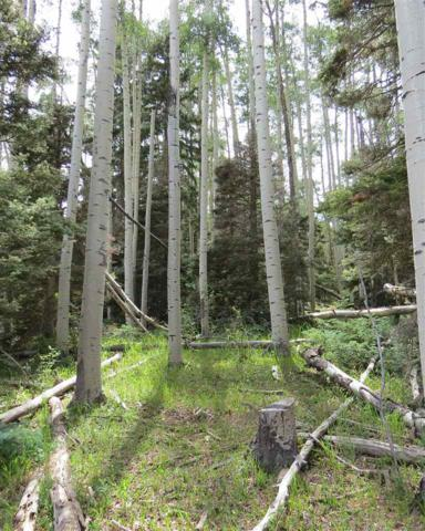 Lot 141 Brazos Dr, Angel Fire, NM 87710 (MLS #101842) :: Page Sullivan Group | Coldwell Banker Mountain Properties