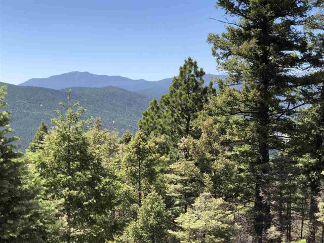316 South Vail Overlook, Angel Fire, NM 87710 (MLS #101843) :: Page Sullivan Group | Coldwell Banker Mountain Properties