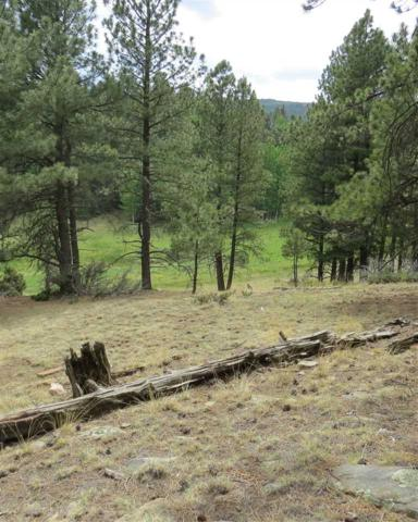 Lot 88 San Juan Drive, Angel Fire, NM 87710 (MLS #101846) :: Page Sullivan Group | Coldwell Banker Mountain Properties