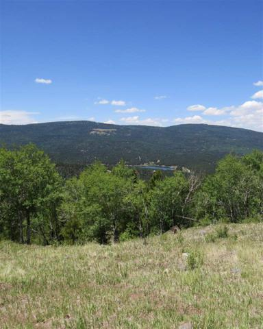 Lot 122 Ravenwood, Angel Fire, NM 87710 (MLS #101847) :: Angel Fire Real Estate & Land Co.