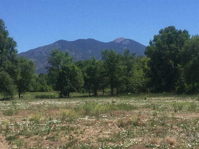 Tract D Charlotte Lane, Taos, NM 87571 (MLS #101852) :: Page Sullivan Group | Coldwell Banker Lota Realty