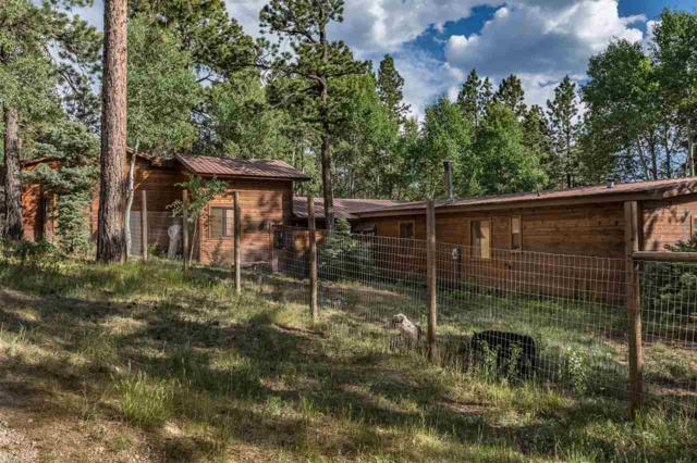 24 Luna Drive, Angel Fire, NM 87710 (MLS #101857) :: Page Sullivan Group | Coldwell Banker Lota Realty