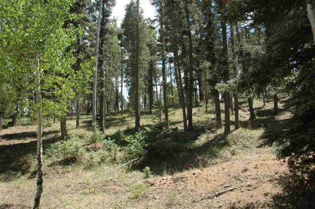 Lot 93 Sam Juan Dr., Angel Fire, NM 87710 (MLS #101861) :: The Chisum Realty Group