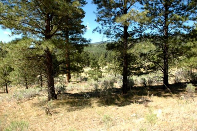Lot 1259 Torrey Pines Ln., Angel Fire, NM 87710 (MLS #101868) :: The Chisum Realty Group