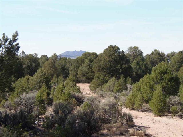 6/10 m E On North Road, Carson, NM 87517 (MLS #101869) :: The Chisum Realty Group