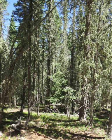 Lot 35 Happy Way, Angel Fire, NM 87710 (MLS #101871) :: The Chisum Realty Group