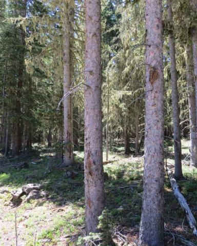Lot 51 Happy Way, Angel Fire, NM 87710 (MLS #101872) :: Angel Fire Real Estate & Land Co.