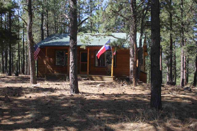 102 Road 9, Eagle Nest, NM 87718 (MLS #101875) :: The Chisum Realty Group