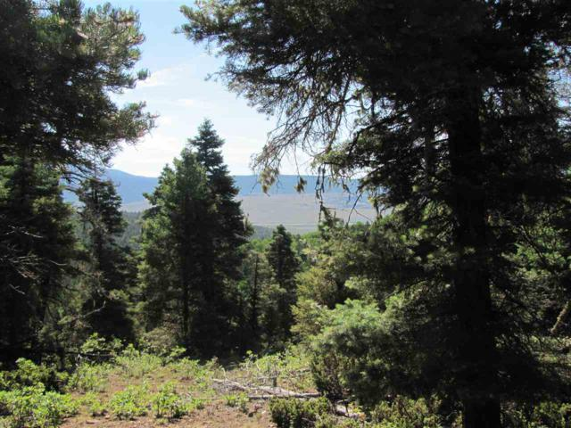 Lot 90 Taos Pines Ranch Road, Angel Fire, NM 87710 (MLS #101884) :: The Chisum Realty Group