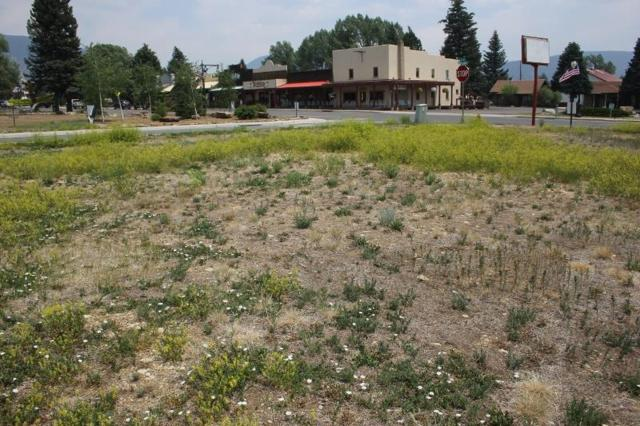 52 Therma Dr., Eagle Nest, NM 87718 (MLS #101908) :: The Chisum Realty Group