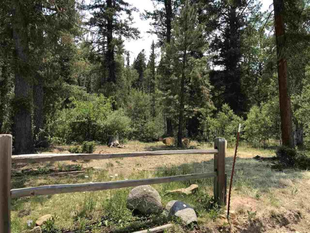 28 Clint Rd Corner Of Clint And Sid Roads, Taos, NM 87571 (MLS #101917) :: Berkshire Hathaway Home Services