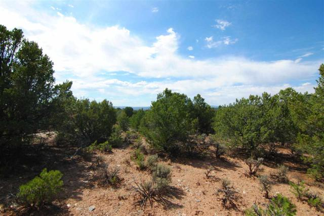 Leroux Road, Arroyo  Seco, NM 87514 (MLS #101918) :: Page Sullivan Group | Coldwell Banker Lota Realty