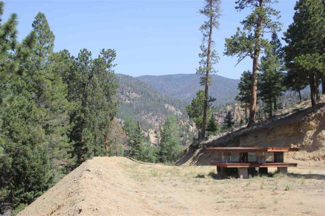 tbd Wild Oaks Subdivision, Red River, NM 87558 (MLS #101923) :: The Chisum Realty Group
