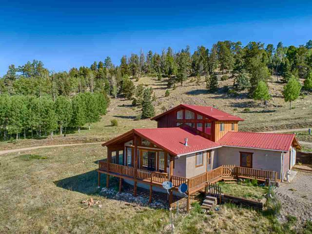 1622 Hwy 38, Red River, NM 87558 (MLS #101924) :: Angel Fire Real Estate & Land Co.