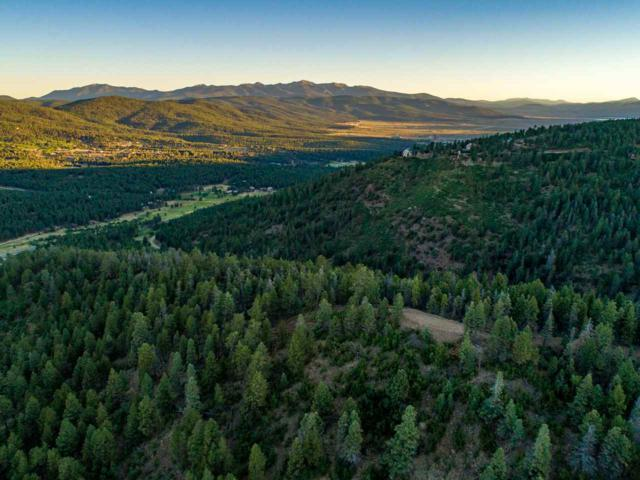 Tract E2 D2 F Ute Valley Rd, Angel Fire, NM 87710 (MLS #101925) :: The Chisum Realty Group