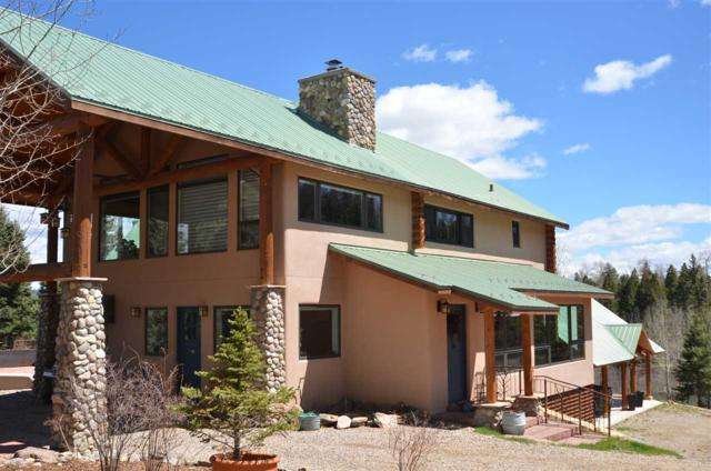 62 Forest Road 76, Angel Fire, NM 87710 (MLS #101926) :: The Chisum Realty Group