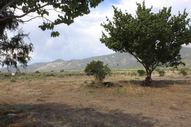 60 Buena Vista Rd, Cerro, NM 87519 (MLS #101927) :: Page Sullivan Group   Coldwell Banker Mountain Properties