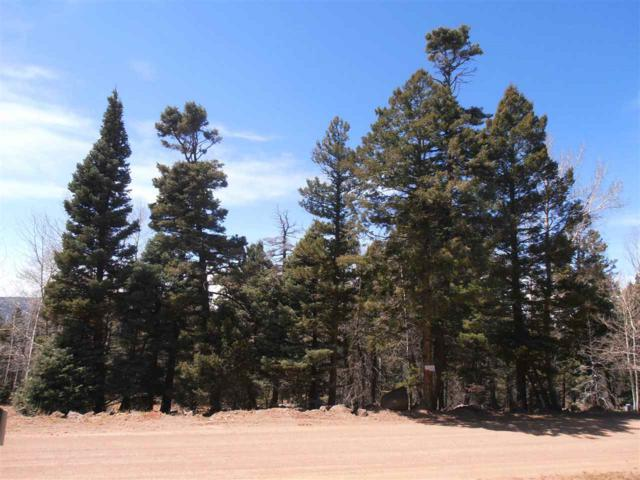 1450 Cheerful Way, Angel Fire, NM 87710 (MLS #101929) :: Page Sullivan Group | Coldwell Banker Mountain Properties