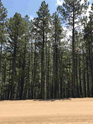 4 SW Tam O Shanter Terrace, Angel Fire, NM 87710 (MLS #101967) :: Page Sullivan Group | Coldwell Banker Mountain Properties