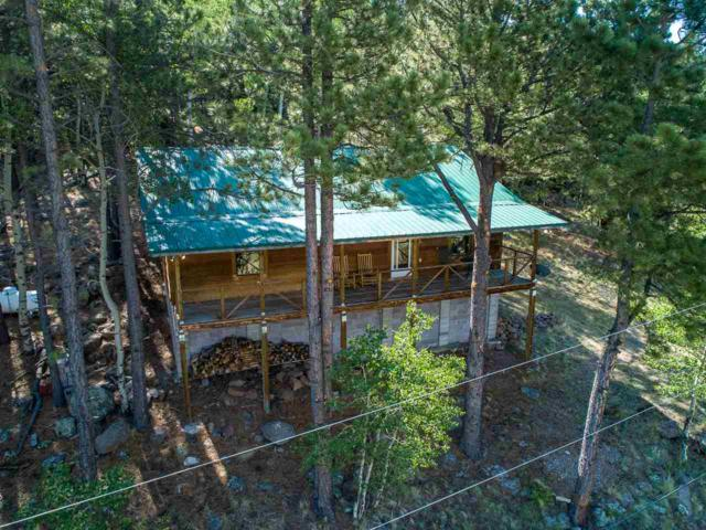 178 State Rd 120, Angel Fire, NM 87710 (MLS #101976) :: The Chisum Realty Group
