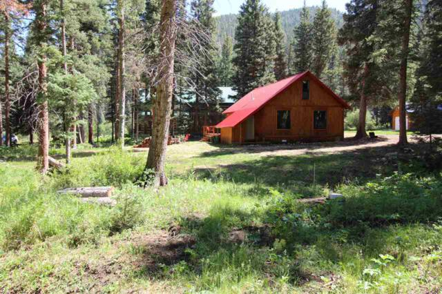 24 Valley Dr, Red River, NM 87558 (MLS #101997) :: Page Sullivan Group | Coldwell Banker Mountain Properties